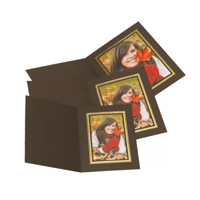 Brown Photo Folder with Gold Gilding.  Upright/Portrait